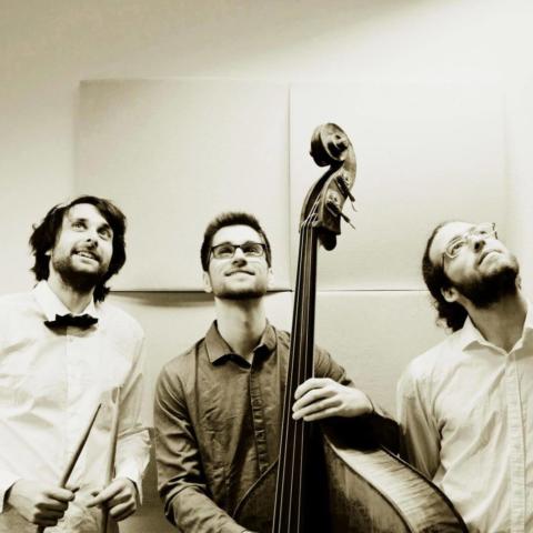 Trio Bambo