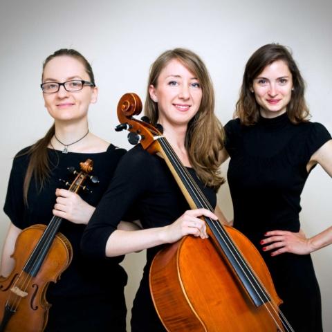 Ensemble of Strings